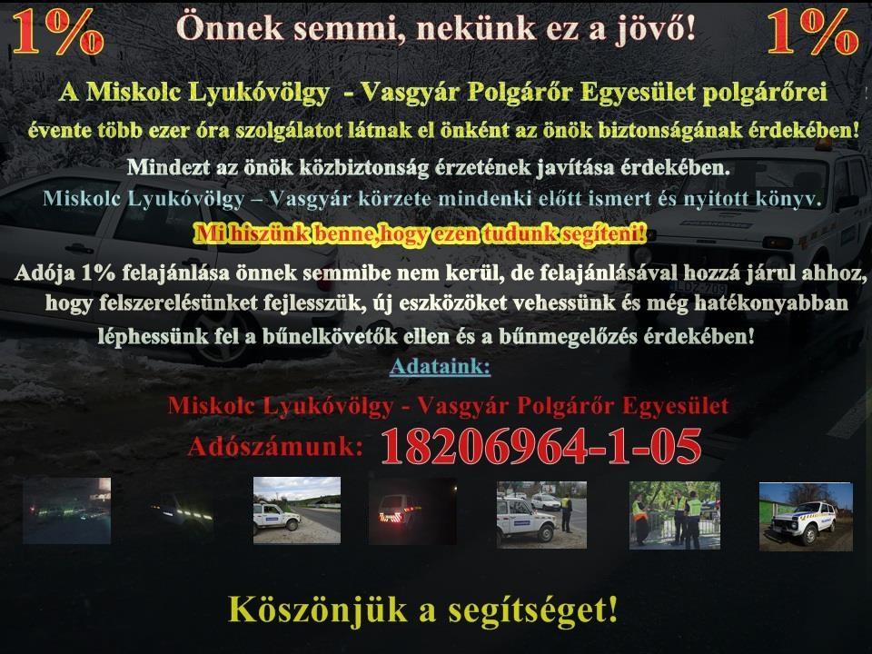 1017345_733224996764354_1373319268_n
